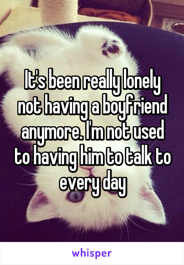 It's been really lonely not having a boyfriend anymore. I'm not used to having him to talk to every day