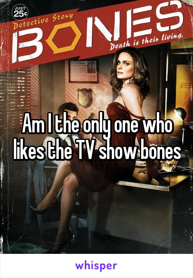Am I the only one who likes the TV show bones