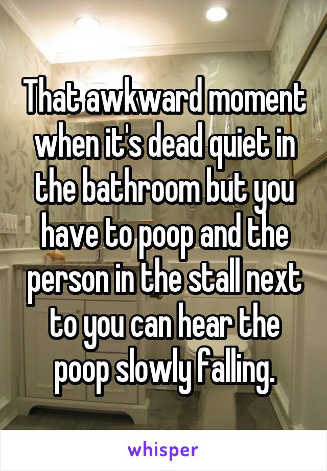 That awkward moment when it's dead quiet in the bathroom but you have to poop and the person in the stall next to you can hear the poop slowly falling.