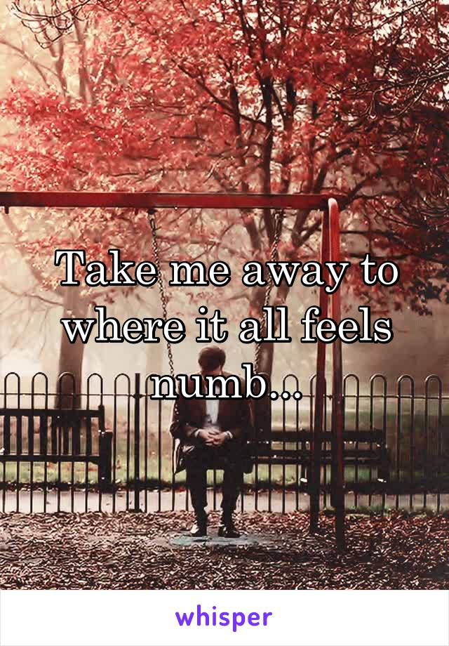 Take me away to where it all feels numb...