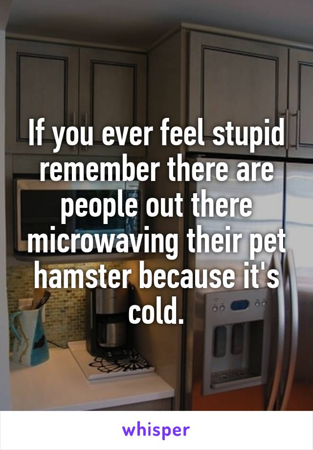 If you ever feel stupid remember there are people out there microwaving their pet hamster because it's cold.