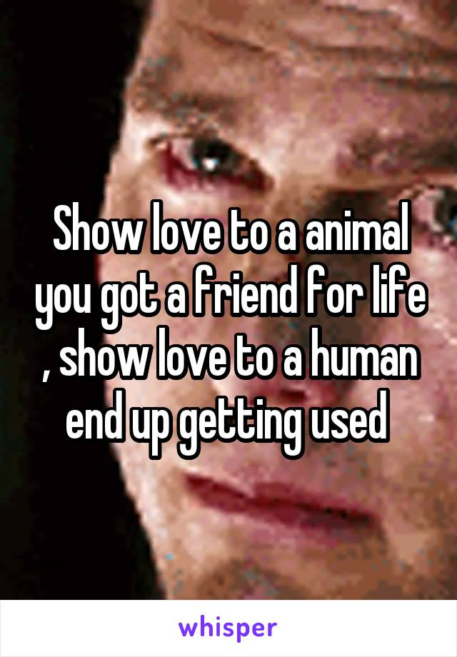 Show love to a animal you got a friend for life , show love to a human end up getting used