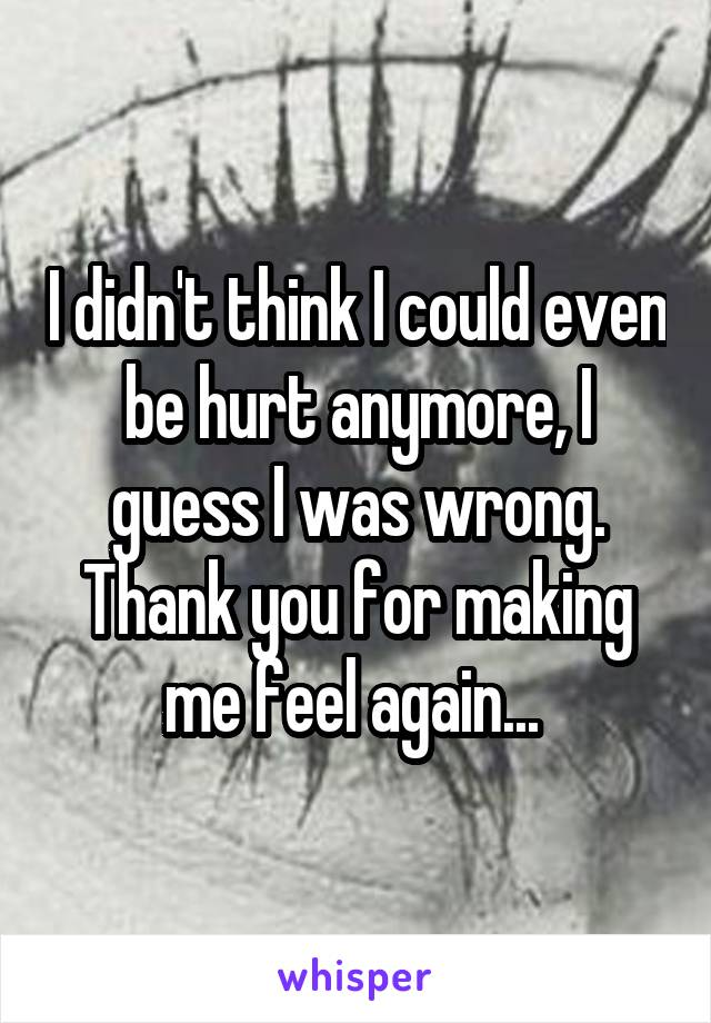 I didn't think I could even be hurt anymore, I guess I was wrong. Thank you for making me feel again...