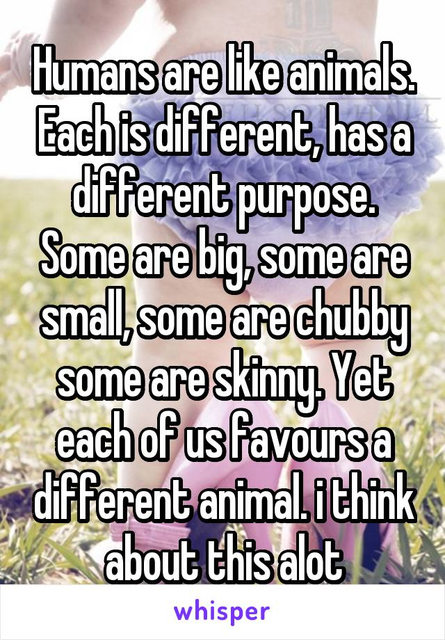 Humans are like animals. Each is different, has a different purpose. Some are big, some are small, some are chubby some are skinny. Yet each of us favours a different animal. i think about this alot