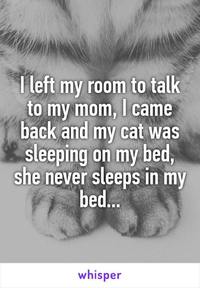 I left my room to talk to my mom, I came back and my cat was sleeping on my bed, she never sleeps in my bed...