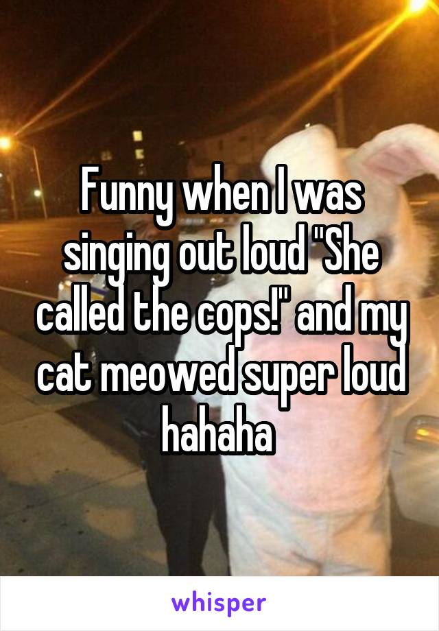 """Funny when I was singing out loud """"She called the cops!"""" and my cat meowed super loud hahaha"""