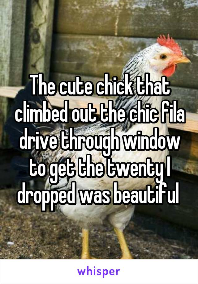 The cute chick that climbed out the chic fila drive through window to get the twenty I dropped was beautiful