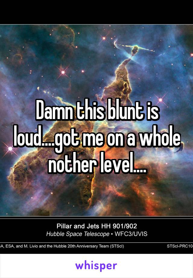 Damn this blunt is loud....got me on a whole nother level....