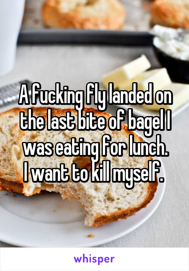 A fucking fly landed on the last bite of bagel I was eating for lunch. I want to kill myself.