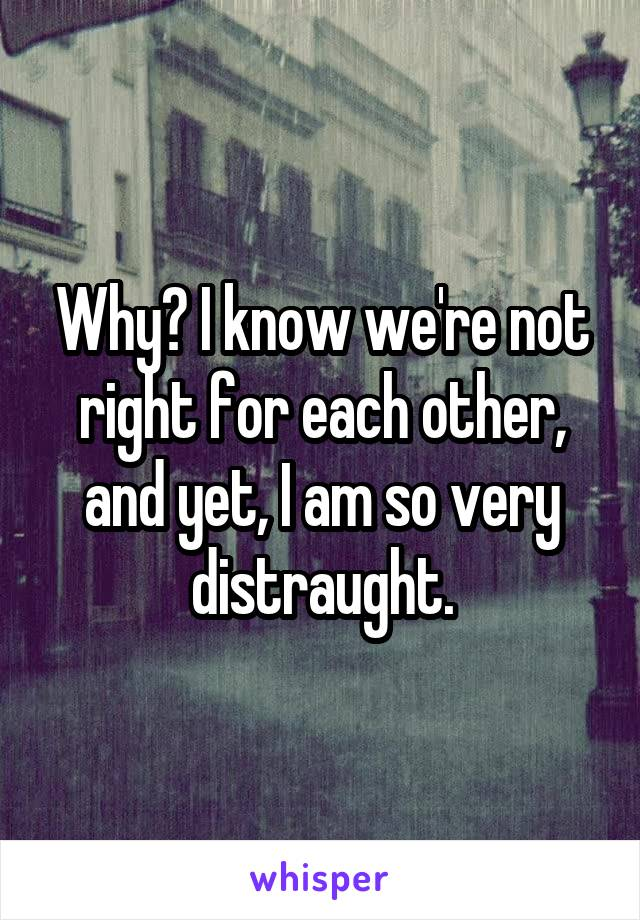 Why? I know we're not right for each other, and yet, I am so very distraught.