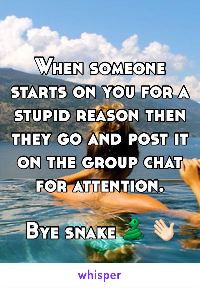 When someone starts on you for a stupid reason then they go and post it on the group chat for attention.   Bye snake 🐍 👋🏻