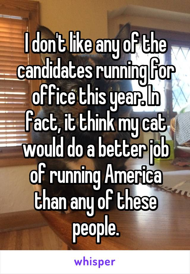 I don't like any of the candidates running for office this year. In fact, it think my cat would do a better job of running America than any of these people.