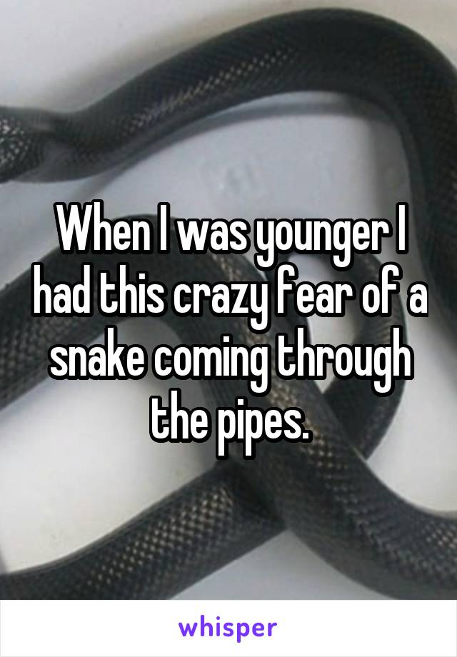 When I was younger I had this crazy fear of a snake coming through the pipes.