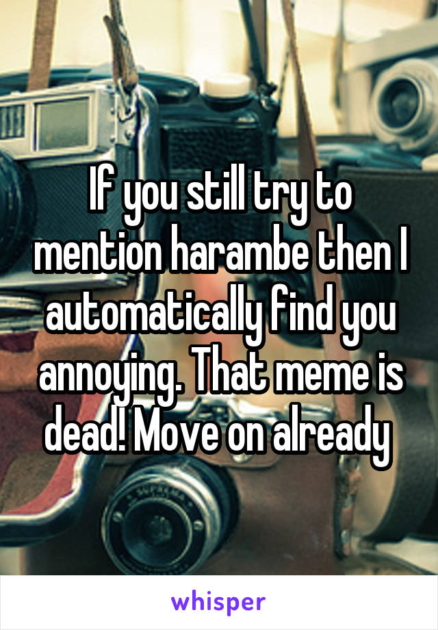 If you still try to mention harambe then I automatically find you annoying. That meme is dead! Move on already