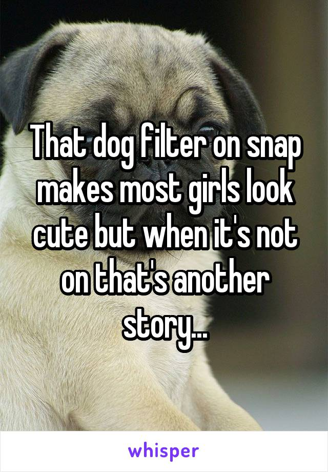 That dog filter on snap makes most girls look cute but when it's not on that's another story...