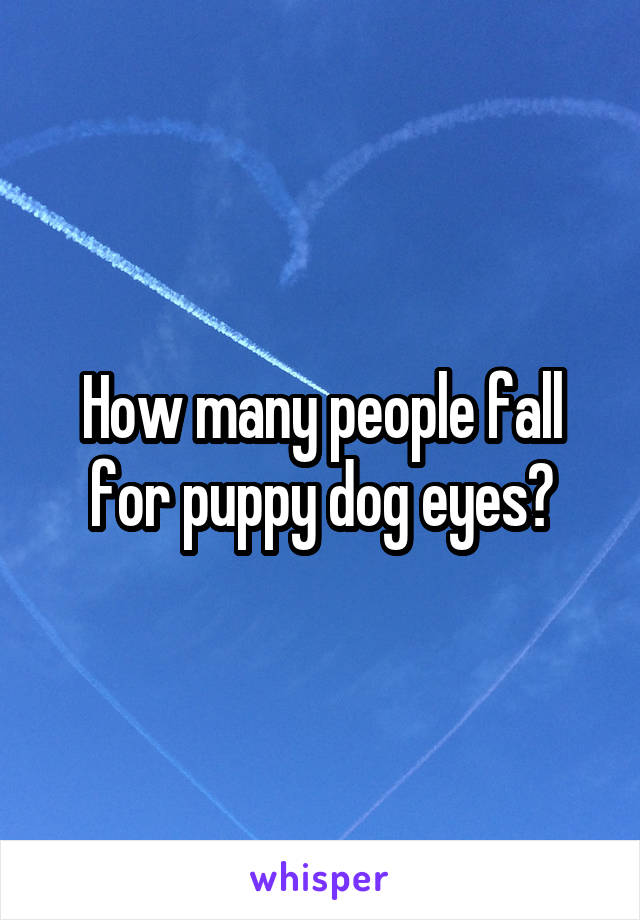 How many people fall for puppy dog eyes?