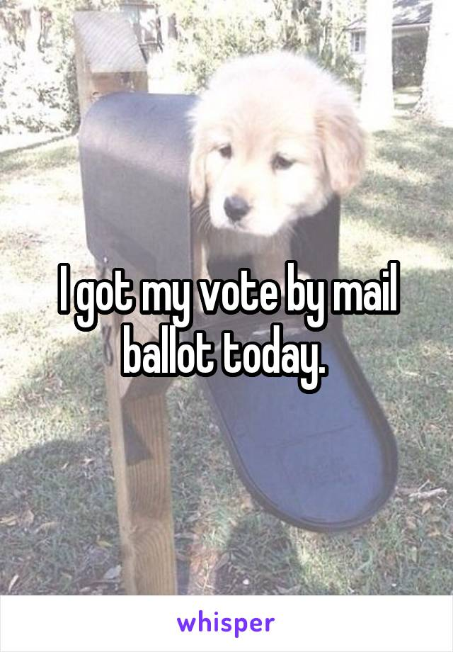 I got my vote by mail ballot today.