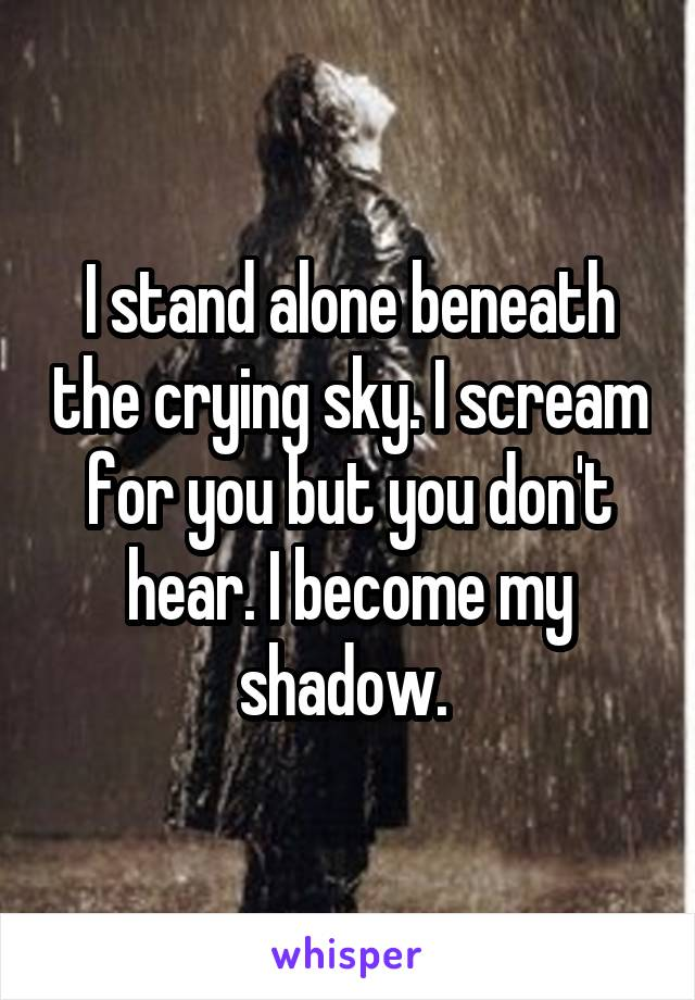 I stand alone beneath the crying sky. I scream for you but you don't hear. I become my shadow.