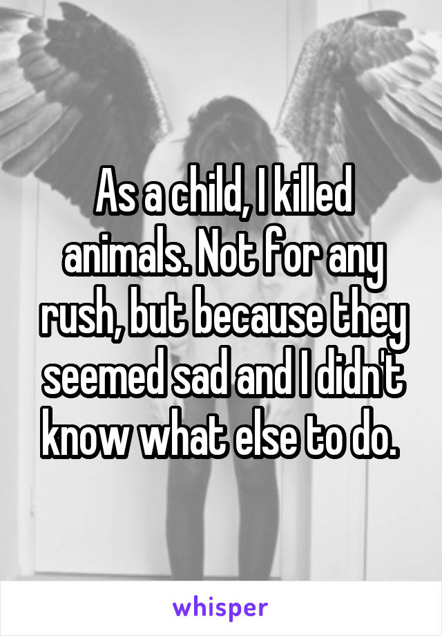 As a child, I killed animals. Not for any rush, but because they seemed sad and I didn't know what else to do.