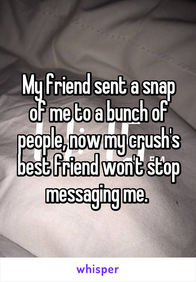 My friend sent a snap of me to a bunch of people, now my crush's best friend won't stop messaging me.