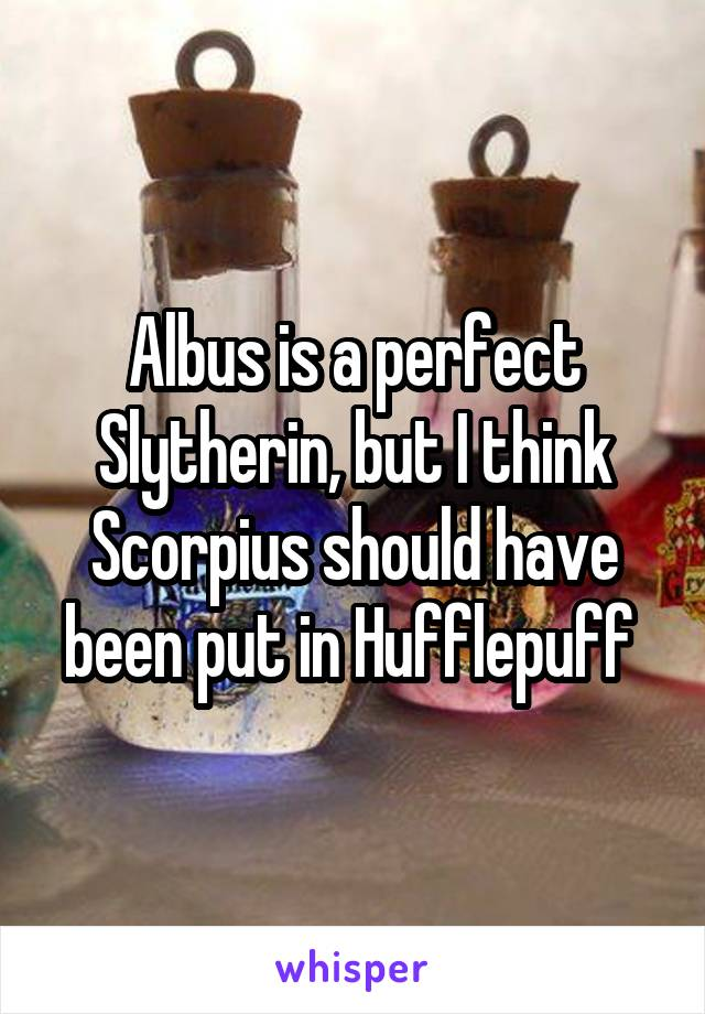 Albus is a perfect Slytherin, but I think Scorpius should have been put in Hufflepuff