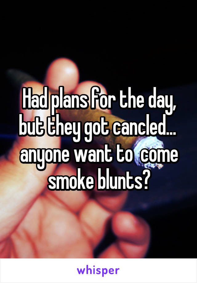 Had plans for the day, but they got cancled...  anyone want to  come smoke blunts?