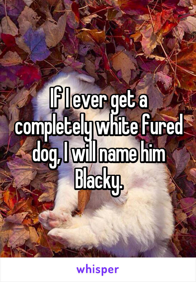 If I ever get a completely white fured dog, I will name him Blacky.