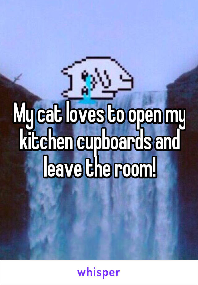 My cat loves to open my kitchen cupboards and leave the room!