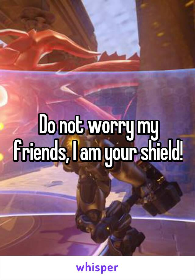 Do not worry my friends, I am your shield!