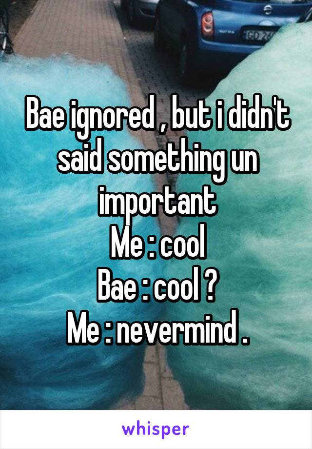 Bae ignored , but i didn't said something un important Me : cool Bae : cool ? Me : nevermind .