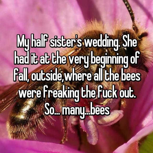 My half sister's wedding. She had it at the very beginning of fall, outside,where all the bees were freaking the fuck out. So... many...bees