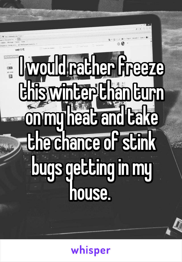 I would rather freeze this winter than turn on my heat and take the chance of stink bugs getting in my house.