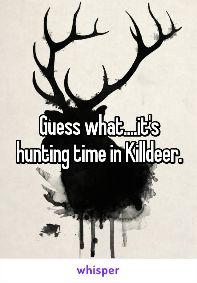 Guess what....it's hunting time in Killdeer.