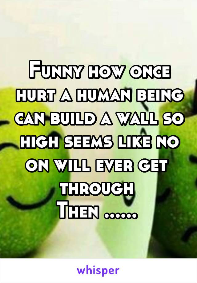 Funny how once hurt a human being can build a wall so high seems like no on will ever get  through  Then ......