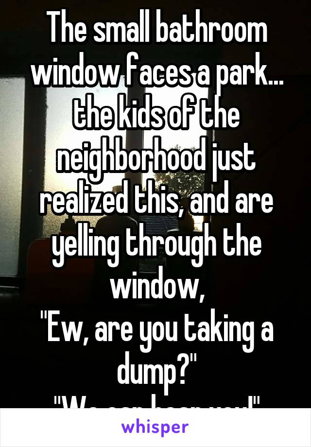 "The small bathroom window faces a park... the kids of the neighborhood just realized this, and are yelling through the window, ""Ew, are you taking a dump?"" ""We can hear you!"""
