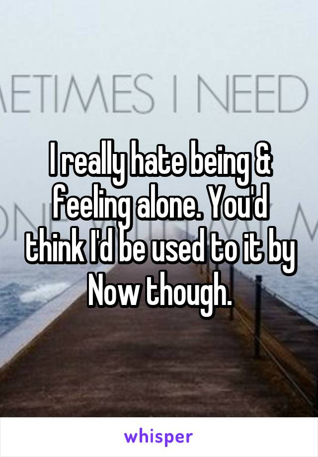 I really hate being & feeling alone. You'd think I'd be used to it by Now though.