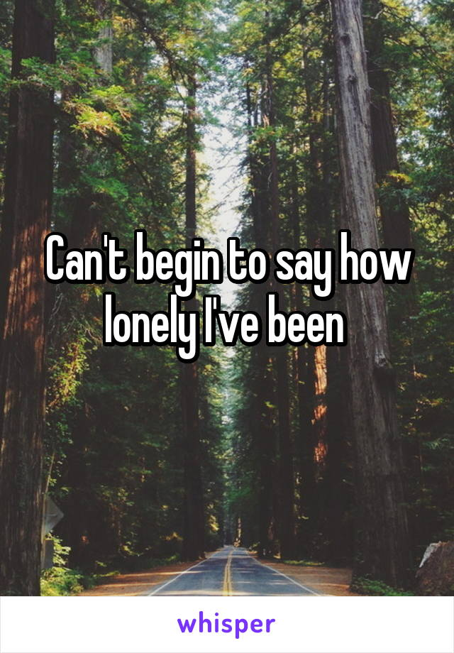 Can't begin to say how lonely I've been