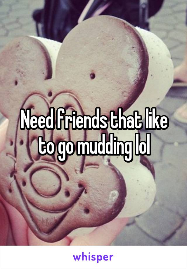 Need friends that like to go mudding lol