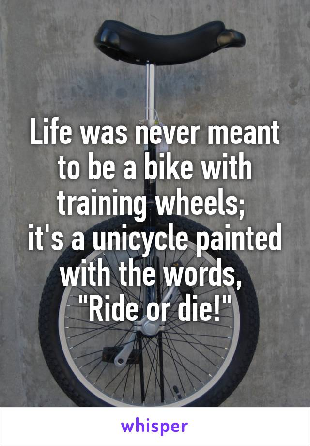 """Life was never meant to be a bike with training wheels;  it's a unicycle painted with the words,  """"Ride or die!"""""""