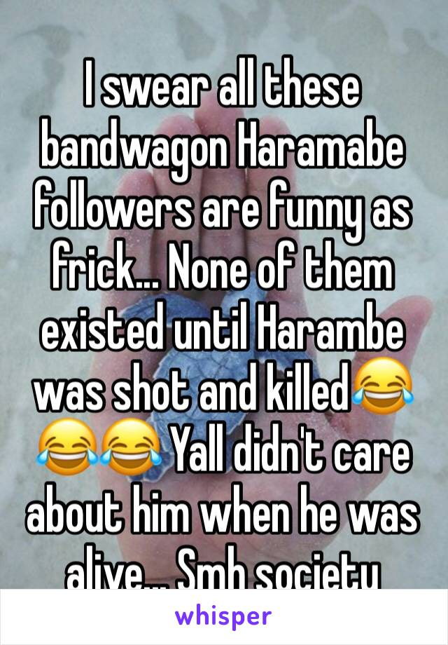 I swear all these bandwagon Haramabe followers are funny as frick... None of them existed until Harambe was shot and killed😂😂😂 Yall didn't care about him when he was alive... Smh society