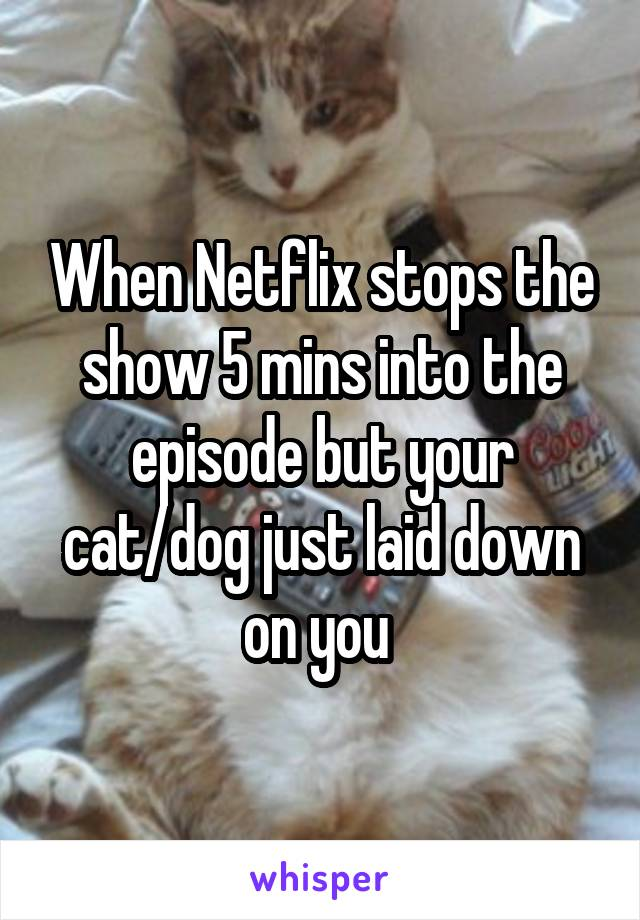 When Netflix stops the show 5 mins into the episode but your cat/dog just laid down on you