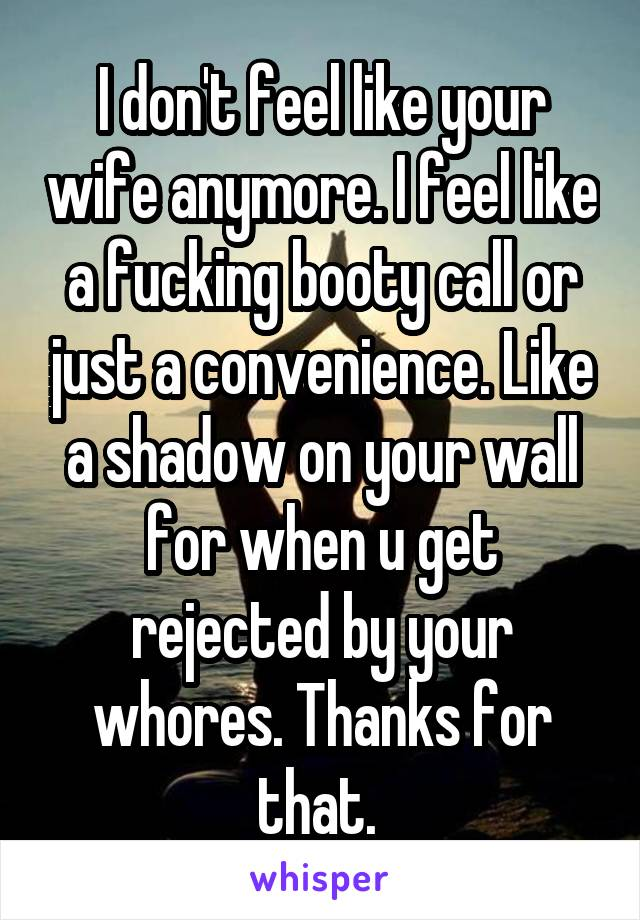 I don't feel like your wife anymore. I feel like a fucking booty call or just a convenience. Like a shadow on your wall for when u get rejected by your whores. Thanks for that.