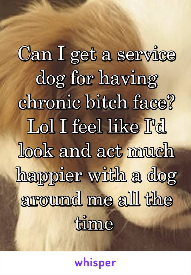 Can I get a service dog for having chronic bitch face? Lol I feel like I'd look and act much happier with a dog around me all the time