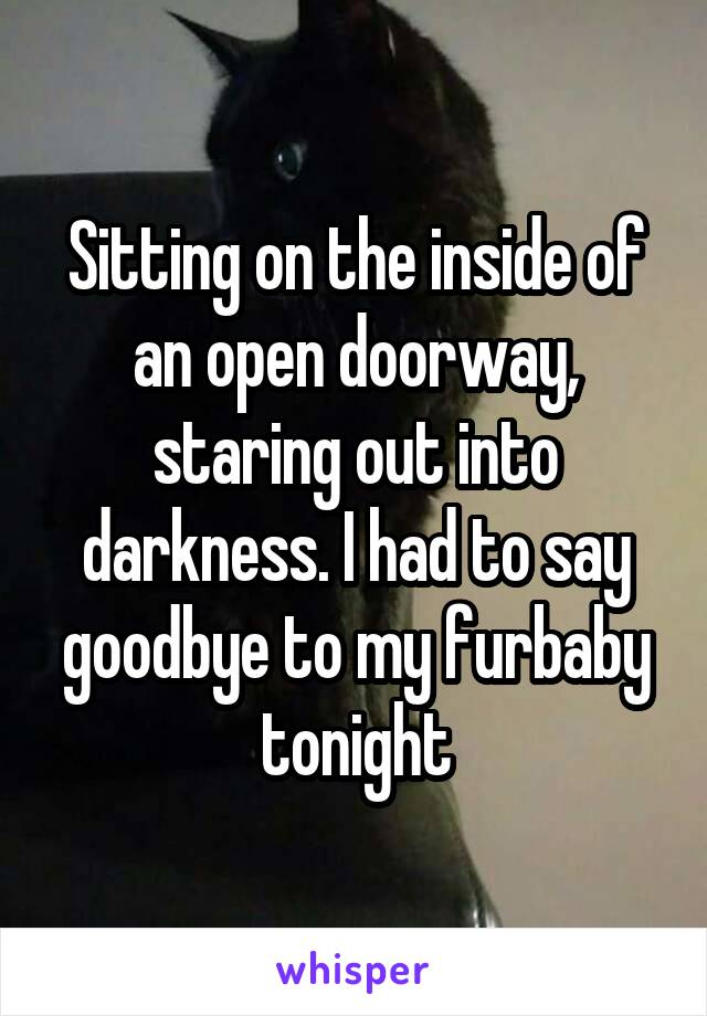 Sitting on the inside of an open doorway, staring out into darkness. I had to say goodbye to my furbaby tonight