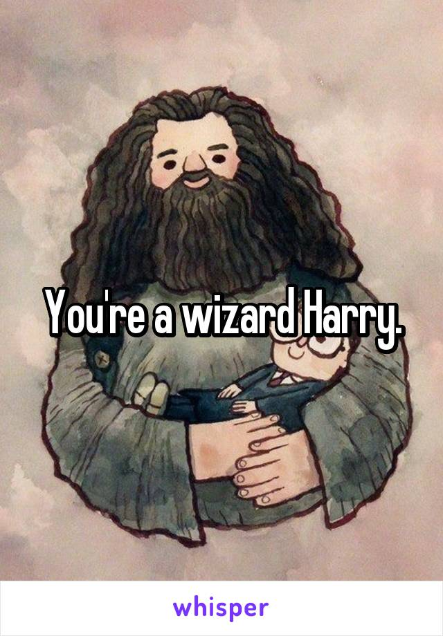 You're a wizard Harry.
