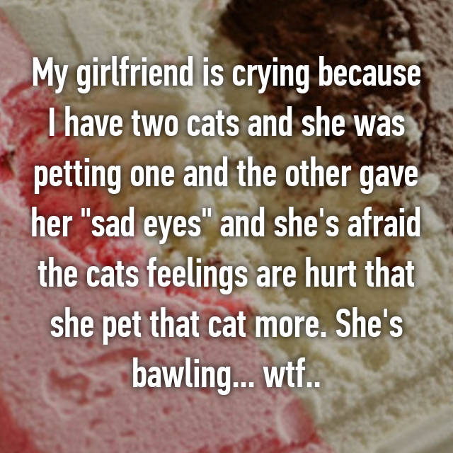 "My girlfriend is crying because I have two cats and she was petting one and the other gave her ""sad eyes"" and she's afraid the cats feelings are hurt that she pet that cat more. She's bawling... wtf.."