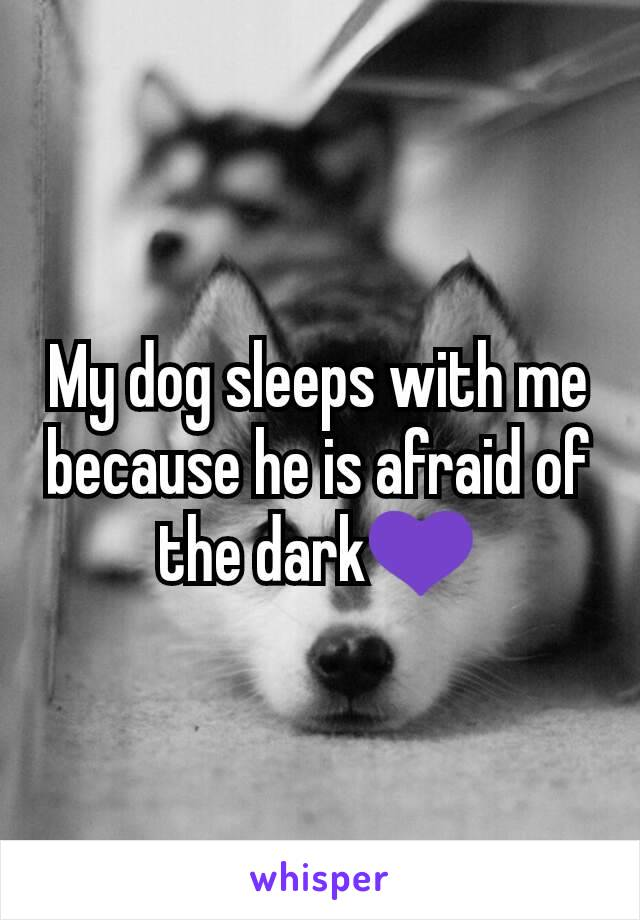 My dog sleeps with me because he is afraid of the dark💜