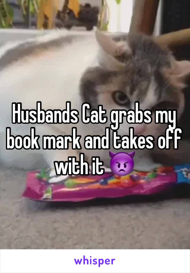Husbands Cat grabs my book mark and takes off with it 👿