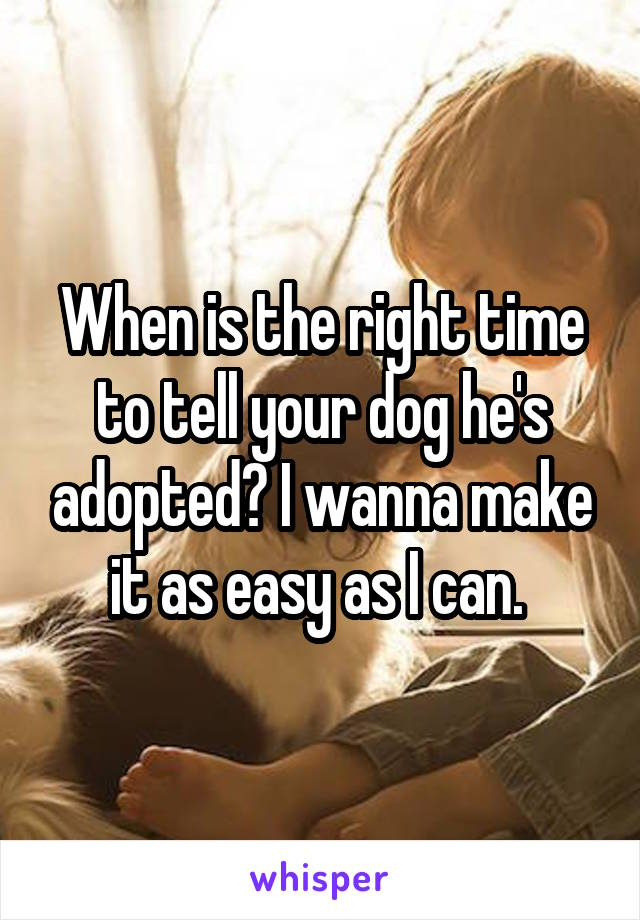 When is the right time to tell your dog he's adopted? I wanna make it as easy as I can.