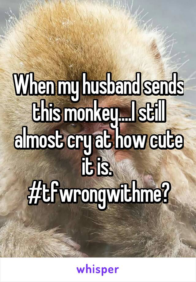 When my husband sends this monkey....I still almost cry at how cute it is.  #tfwrongwithme?